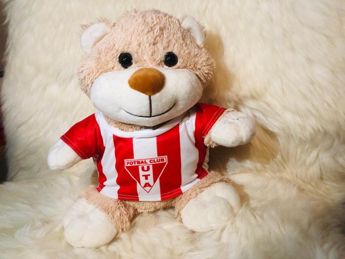 Teddy bear UTA 2