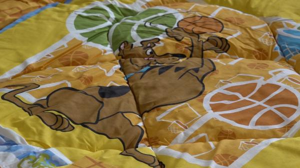 Set pilota si fata de perna Scooby Doo 10