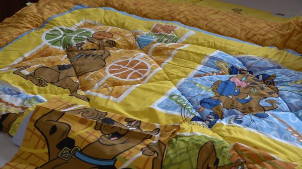 Set pilota si fata de perna Scooby Doo 12