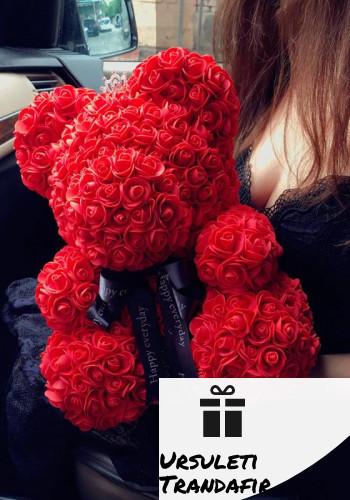Ursuleti din trandafir
