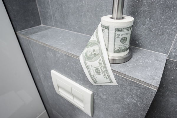 Hartie igienica Dolar 3
