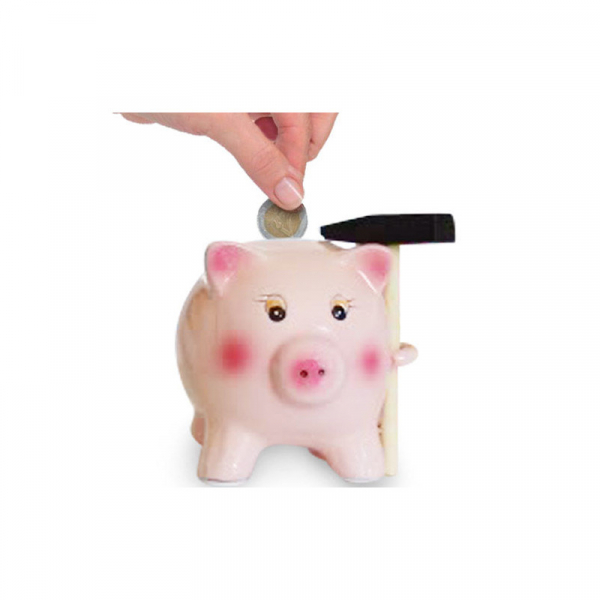 Pusculita Porcusor Economic cu ciocan 0