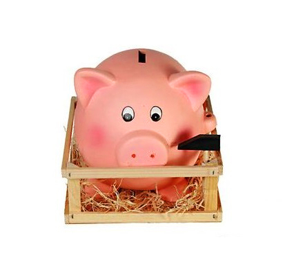 Pusculita Porcusor roz cu tarc din lemn 1