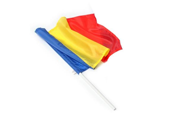 Steag Romania 1