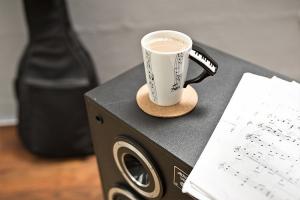 Cana instrumente muzicale1