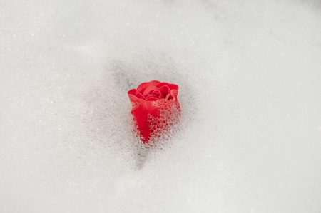 Trandafiri de săpun în cos de metal1