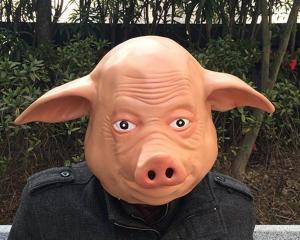 Masca de porc0