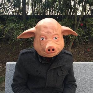 Masca de porc2