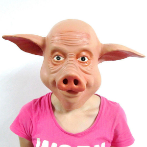 Masca de porc1