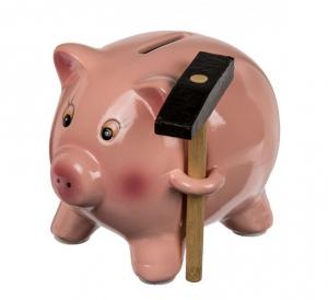 Pusculita Porcusor Economic cu ciocan1