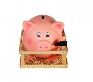 Pusculita Porcusor roz cu tarc din lemn1