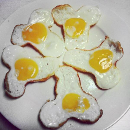 Tigaie pentru oua- WILLY [2]