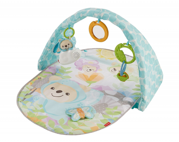 Centru activitati Fisher Price Butterfly Dreams 0