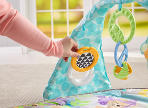 Centru de activitati Fisher Price Butterfly Dreams2
