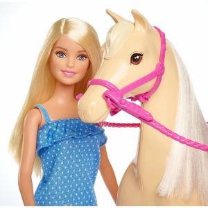 Set Papusa Barbie cu calut Mattel1