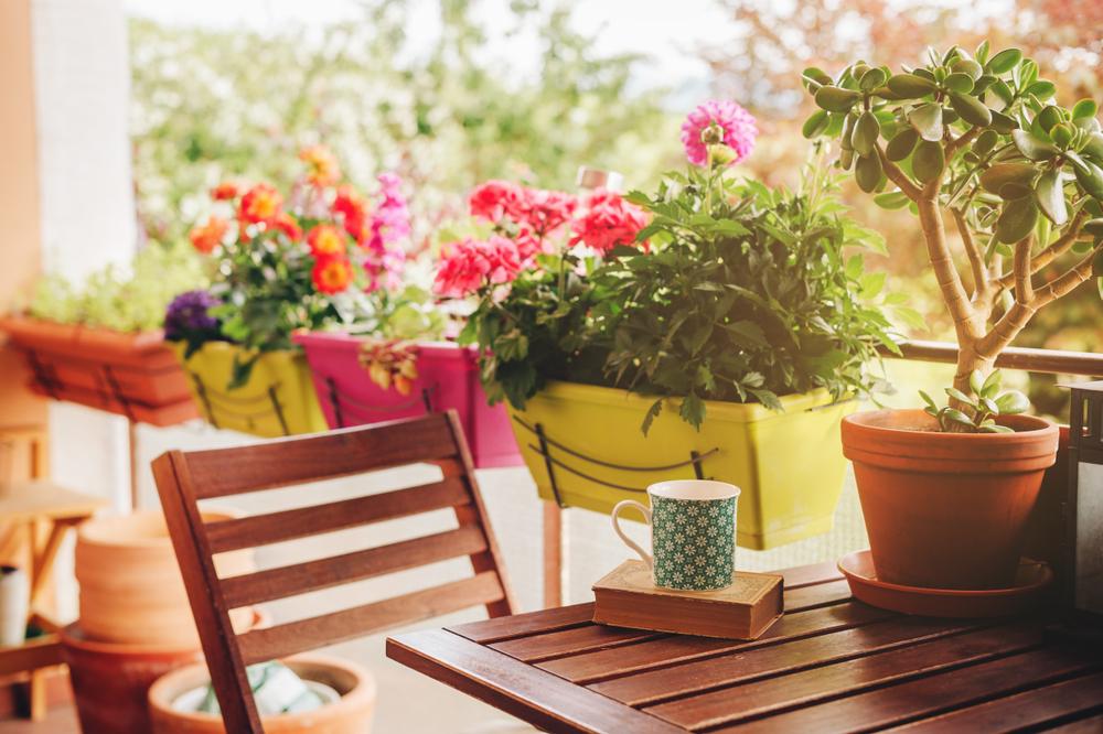 Aranjamente florale de grădină: idei creative, ușor de pus în practică
