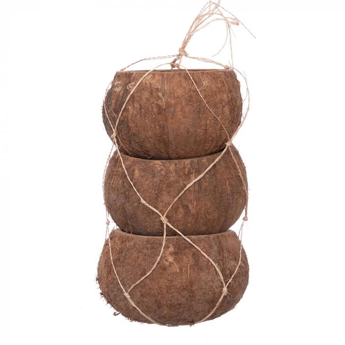 Cocos natur [0]