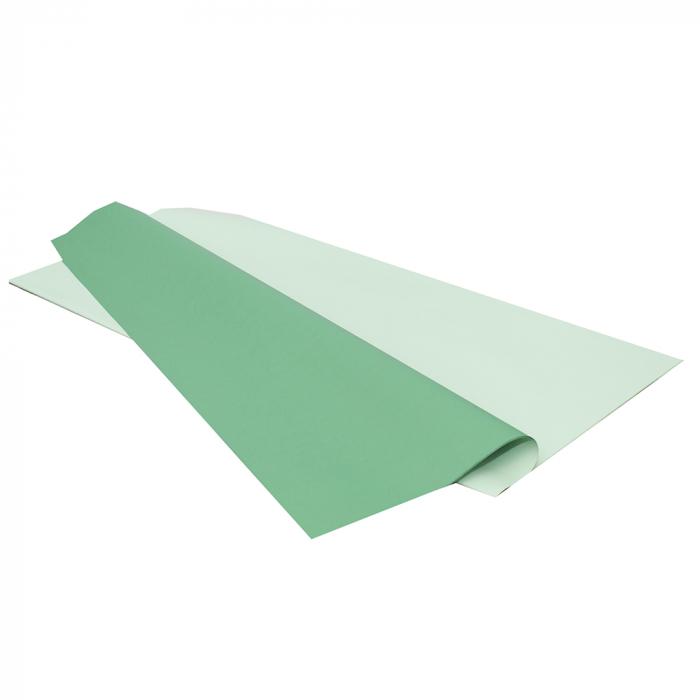 Ambalaj 2 fete verde-verde deschis [0]