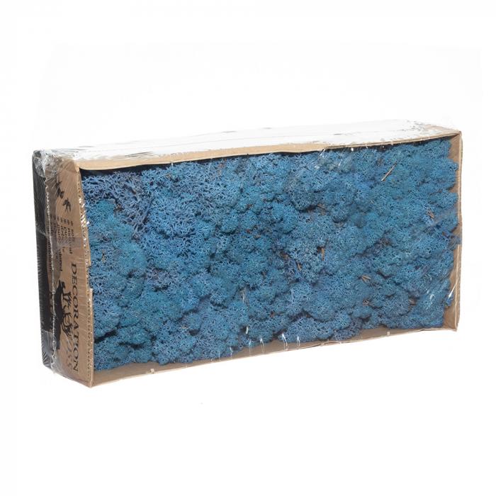 Licheni albastri [0]
