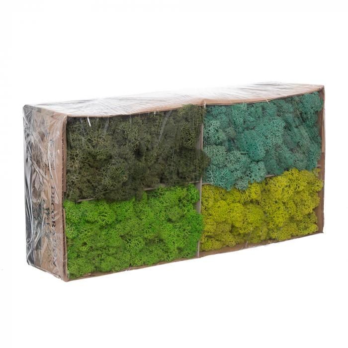 Licheni mix green [0]