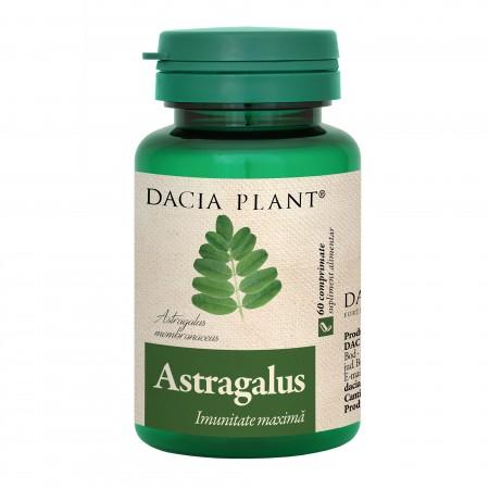 Astragalus comprimate 0