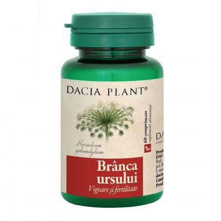 Branca Ursului 60  comprimate Dacia Plant [0]