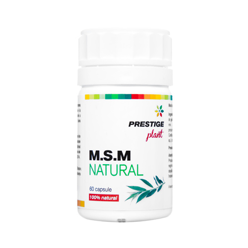 MSM Natural 60 cps Prestige Plant 0