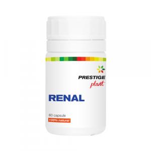 Renal 60 cps Prestige Plant