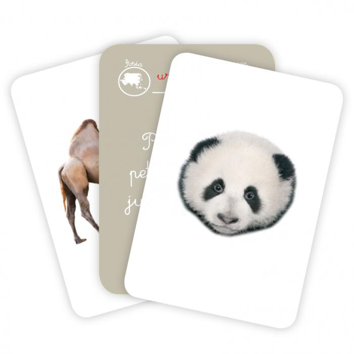 Cărți de joc Montessori -Asocieri ANIMALE [2]