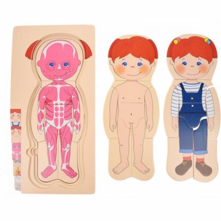 Puzzle din lemn în straturi Anatomia Corpului uman - FATĂ [2]