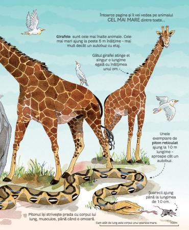 Marea carte a animalelor (Usborne) [2]