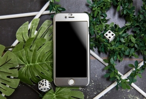 Husa Joyroom 360 + folie sticla iPhone 6 Plus / 6S Plus, Silver1