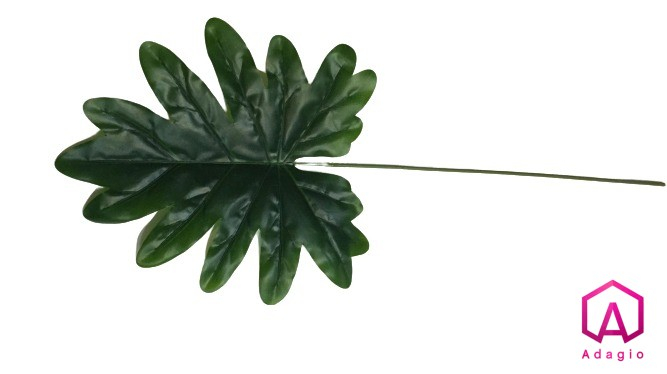 Filodendron 0