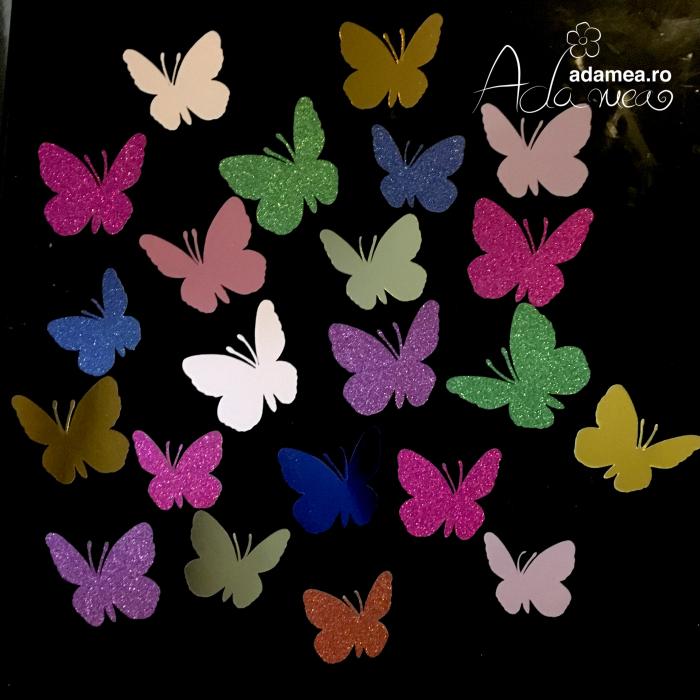 Set 22 fluturi multicolori [0]