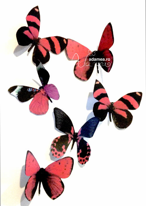 Set format din 6 fluturi cu roșu și negru 0