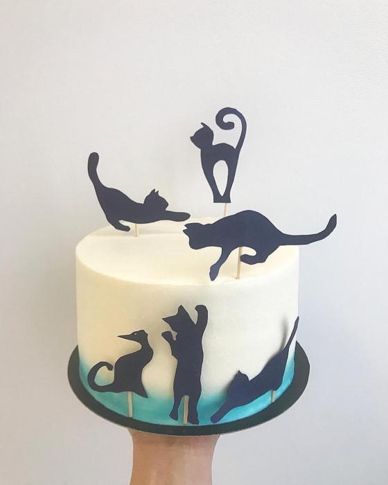 Set 6 toppere tort cu pisicute [0]
