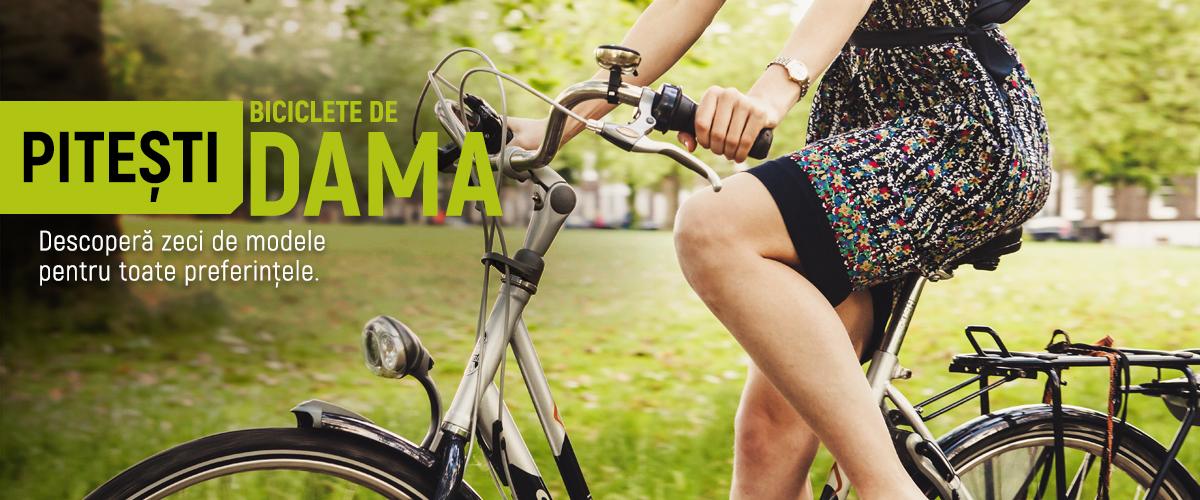 biciclete-dama-pitesti-transport-gratuit
