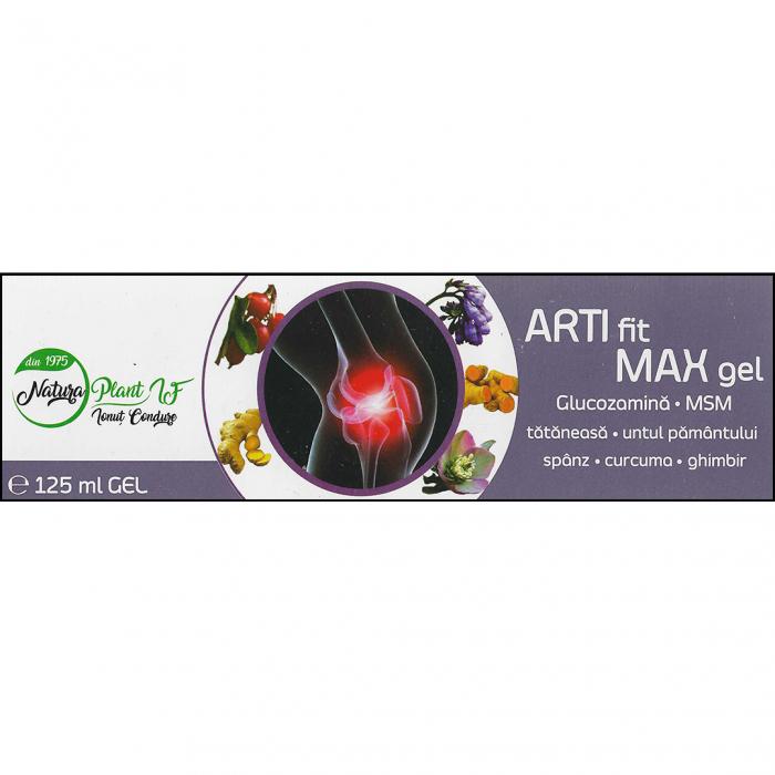 Artifit Max Gel e125ml [0]