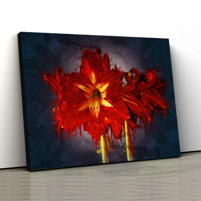 Tablou Canvas - Amarylis 0