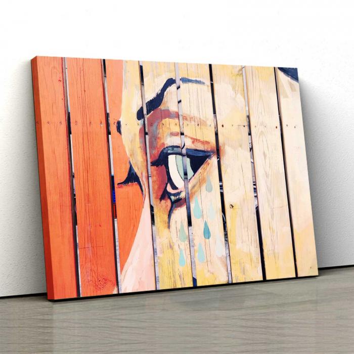Tablou Canvas - Art 0