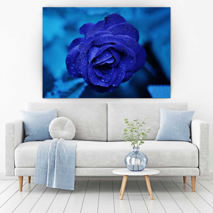 Tablou Canvas - Blue Rose [1]