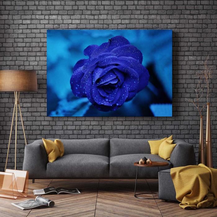 Tablou Canvas - Blue Rose [2]
