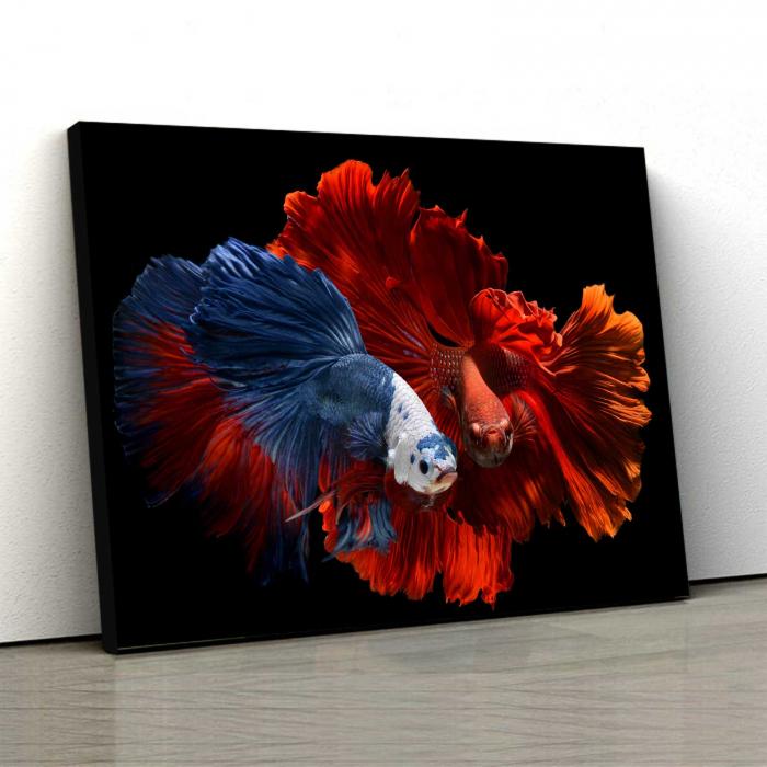 Tablou Canvas - Colorful Fish 0
