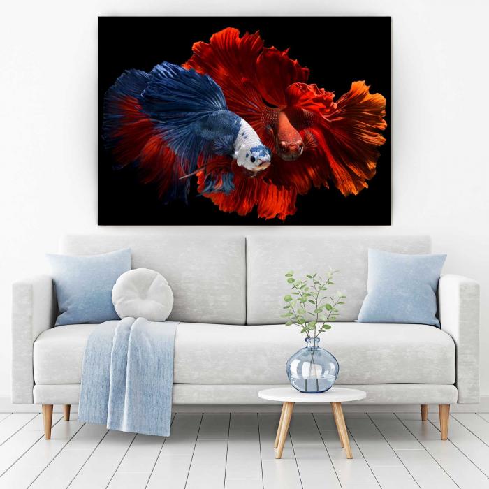 Tablou Canvas - Colorful Fish 1
