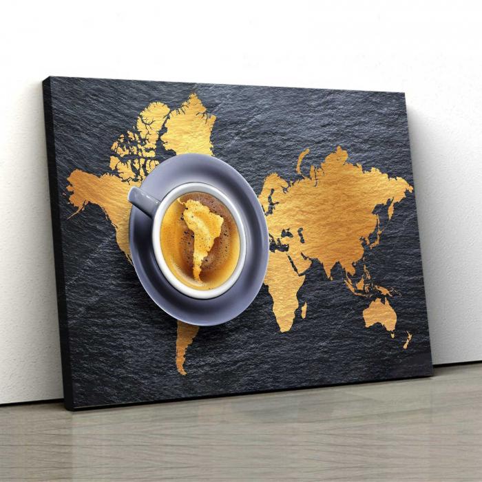 Tablou Canvas - Harta Lumii 0