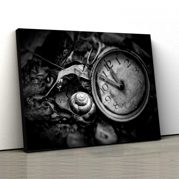 Tablou Canvas - Lost In Time 0