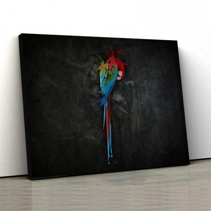 Tablou Canvas - Parrot [0]