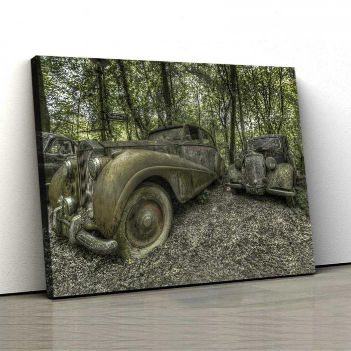 Tablou Canvas - Static Car [0]