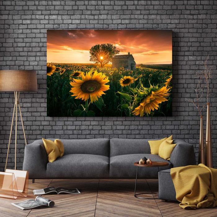Tablou-canvas-floral-floarea-soarelui 2