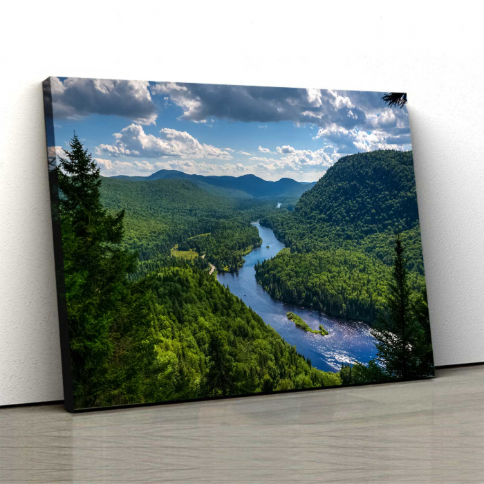 Tablou Canvas Forest 0